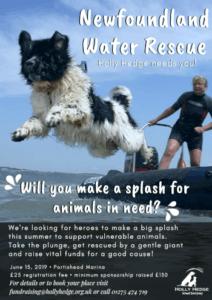 Newfoundland Water Rescue 2019 @ Portishead Marina | Portishead | England | United Kingdom