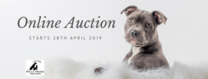 Online Auction 2019 @ Facebook