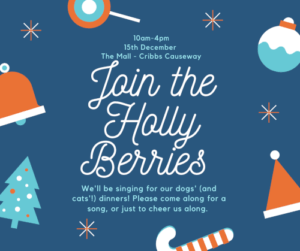 Holly Berries 2019 @ The Mall at Cribbs Causeway | Patchway | England | United Kingdom